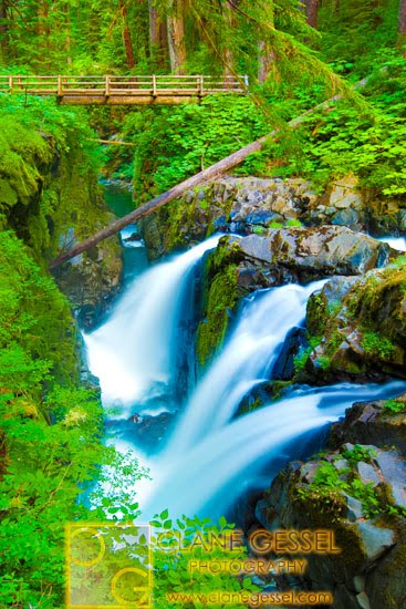 Sol duc falls in the Olympic national park washington