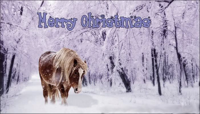 horses in snow wallpaper. From all of us here at Iron Ridge Sport Horses. May your day be filled with
