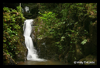 Tonsai Waterfall in Phuket