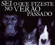 Não abandone o seu animal de estimação: