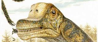 Abydosaurio, una nueva especie de braquiosaurio