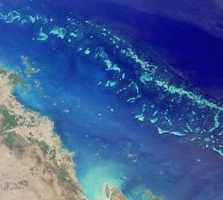 Se recupera la Gran Barrera de Coral
