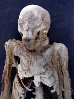 Una de las momias que se presentan en la exposición del Museo de Arqueología de Cataluña.- PROYECTO MONTHEMHAT