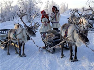 Para los animales del Ártico es indiferente que sea de día o de noche