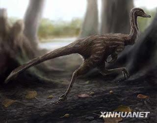 Descubren dinosaurio mononykus en la provincia central china de Jenan