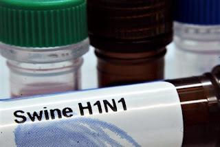 Carrera para encontrar vacuna contra gripe A
