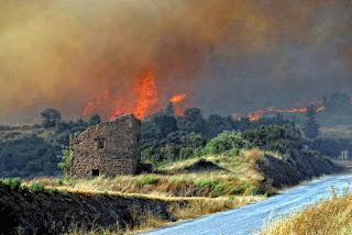 El incendio en Agramunt. Maite Monne / Diari Segre