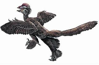 Reconstrucción de Anchiornis huxleyi. Zhao Chuang / Xing Lida