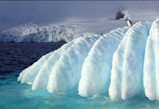 La formación del casquete polar antártico se debió a un declive del CO2
