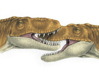 Pelea de dos jóvenes tiranosaurios. Erica Lyn Schimidt