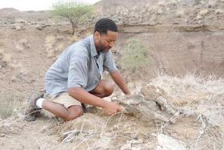 El investigador Zaeresenay Alemseged, en las excavaciones. Nature
