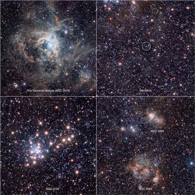 Astrónomos obtienen imagen de Nebulosa Tarántula