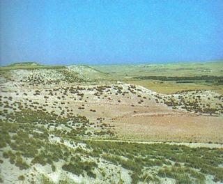 Nuevas tesis sobre Orce describen el entorno ecológico de Europa hace 1,5 millones de años