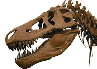 Los dinosaurios no eran tan fieros