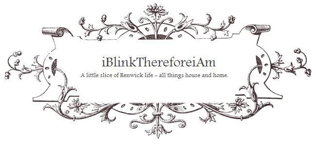 iBlinkThereforeiAm