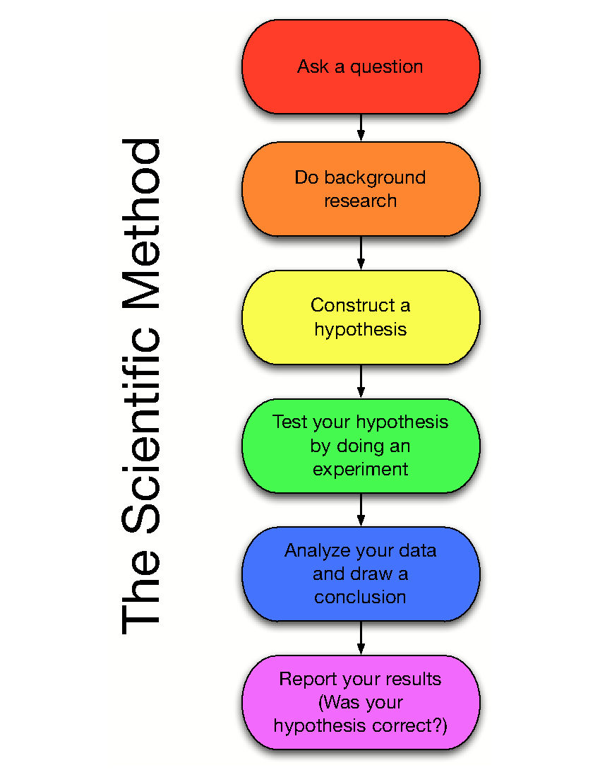 What Are the Five Steps in the Scientific Method?