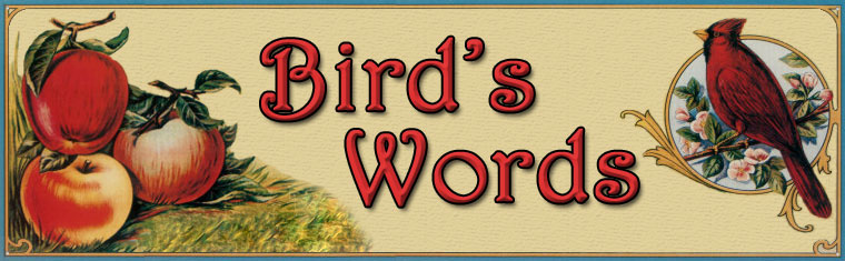 Bird's Words
