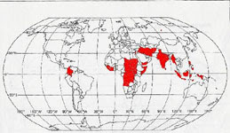 child soldiers map - photo #32
