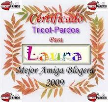 Certificado de Mejor Amiga Bloguera 2009 !!!