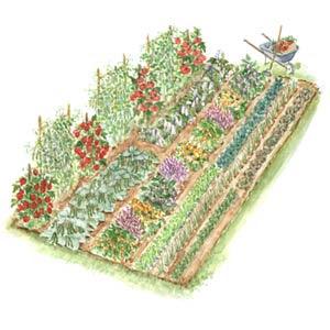 Free Sample Freak Free Garden Plans