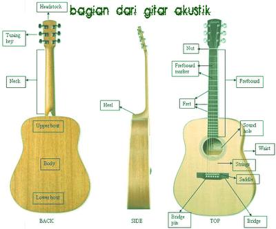 http://4.bp.blogspot.com/_D1i3tYOZwRc/TI6wSQZWG5I/AAAAAAAAACE/Otb9IQxC1z8/s1600/guitaranatomy.png