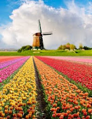 Holland is Lovely