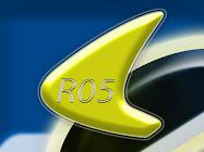 RO5 | Dynamic Form