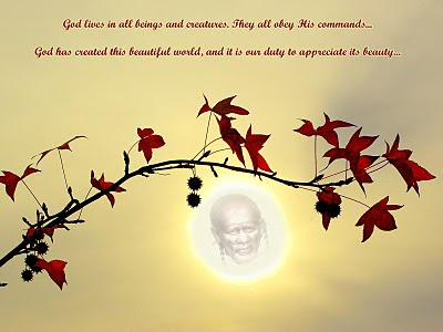 A Couple Of Sai Baba Experiences - Part 7