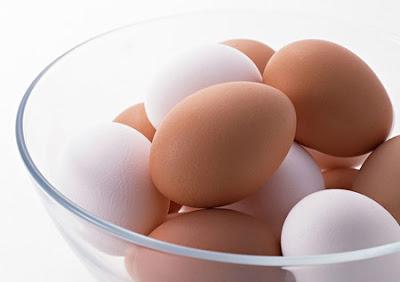 戴奧辛雞蛋