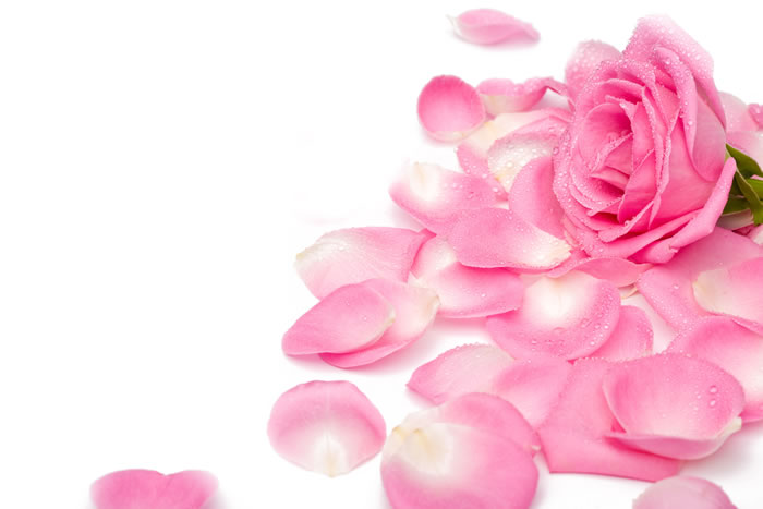 Hot Pink Rose Petals Place this in a bottle together with pink rose petals.