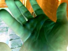 A un gesto de su mano,