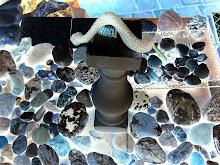 Las Piedras