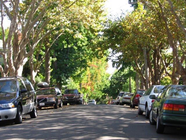 Mesa Avenue