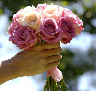 http://4.bp.blogspot.com/_DDMqlCPMNjM/TMoZPP_b5LI/AAAAAAAAdX0/5-PjXQRy8s4/s1600/summer-rose-bouquet_lg.jpg