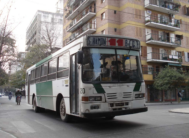 LOS PUMAS LINEA 11