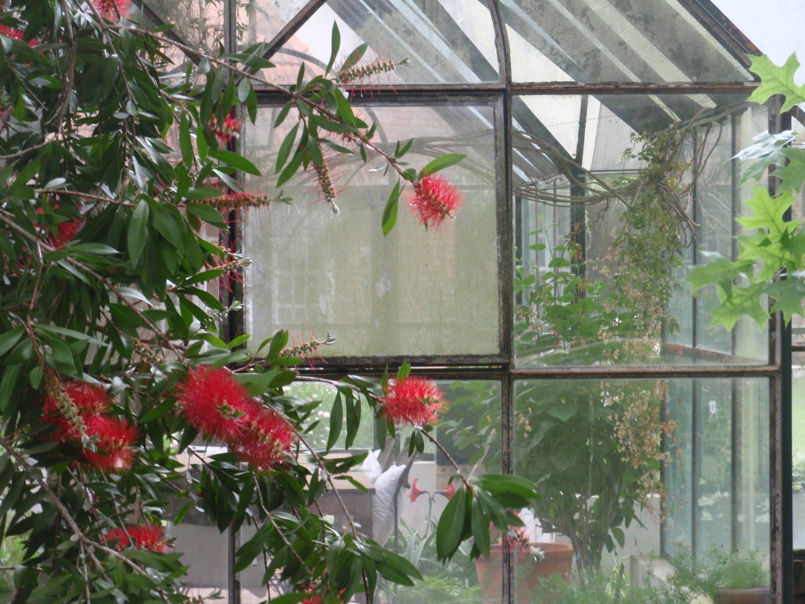 Bonheur maison proyecto jardin for Cortinas para jardin de invierno