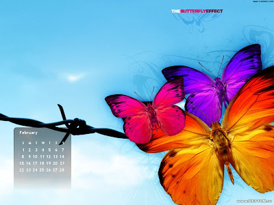 butterfly effect february 2009