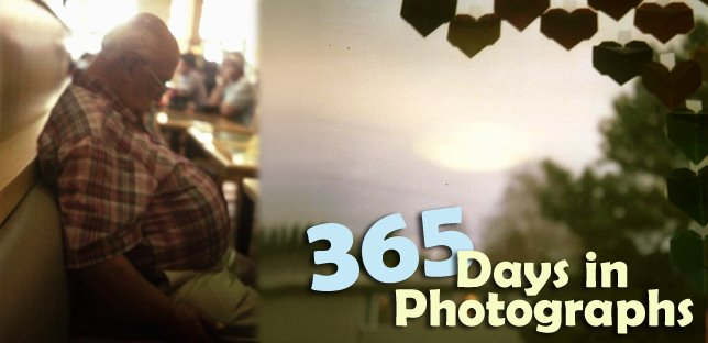 365 Days in Photographs