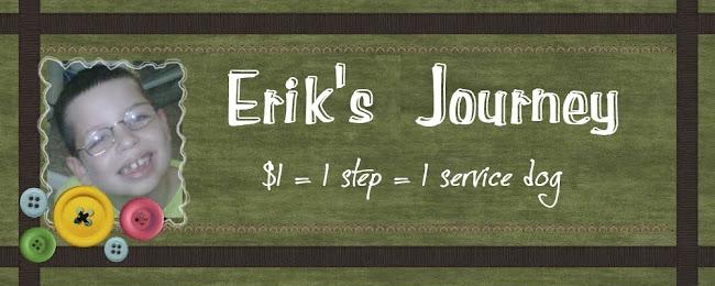 Erik's Journey