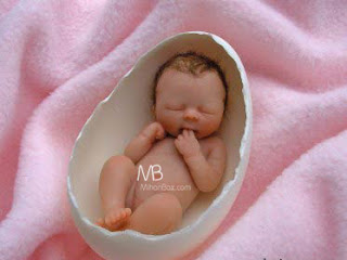 Mihanbax.com    عروسکهای نوزاد کوچکتر از کف دست!