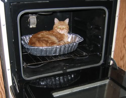 JUST FOR YOU XUME!! Cat-pie