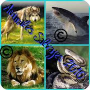 Aquí encontraran a todos los animales salvajes que existan o que existirán .