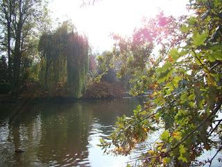 """""""Bois de Vincennes"""""""