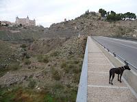 Puente de la Degollada: al final del puente, en la dirección hacia donde camina Pepa sale un sendero a mano izquierda que hemos de tomar, en la otra acera, justo enfrente del comienzo del sendero, queda el acceso a la Academia militar
