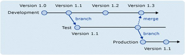 how to create branch in svn using eclipse