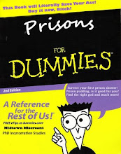 Prison For Dummies