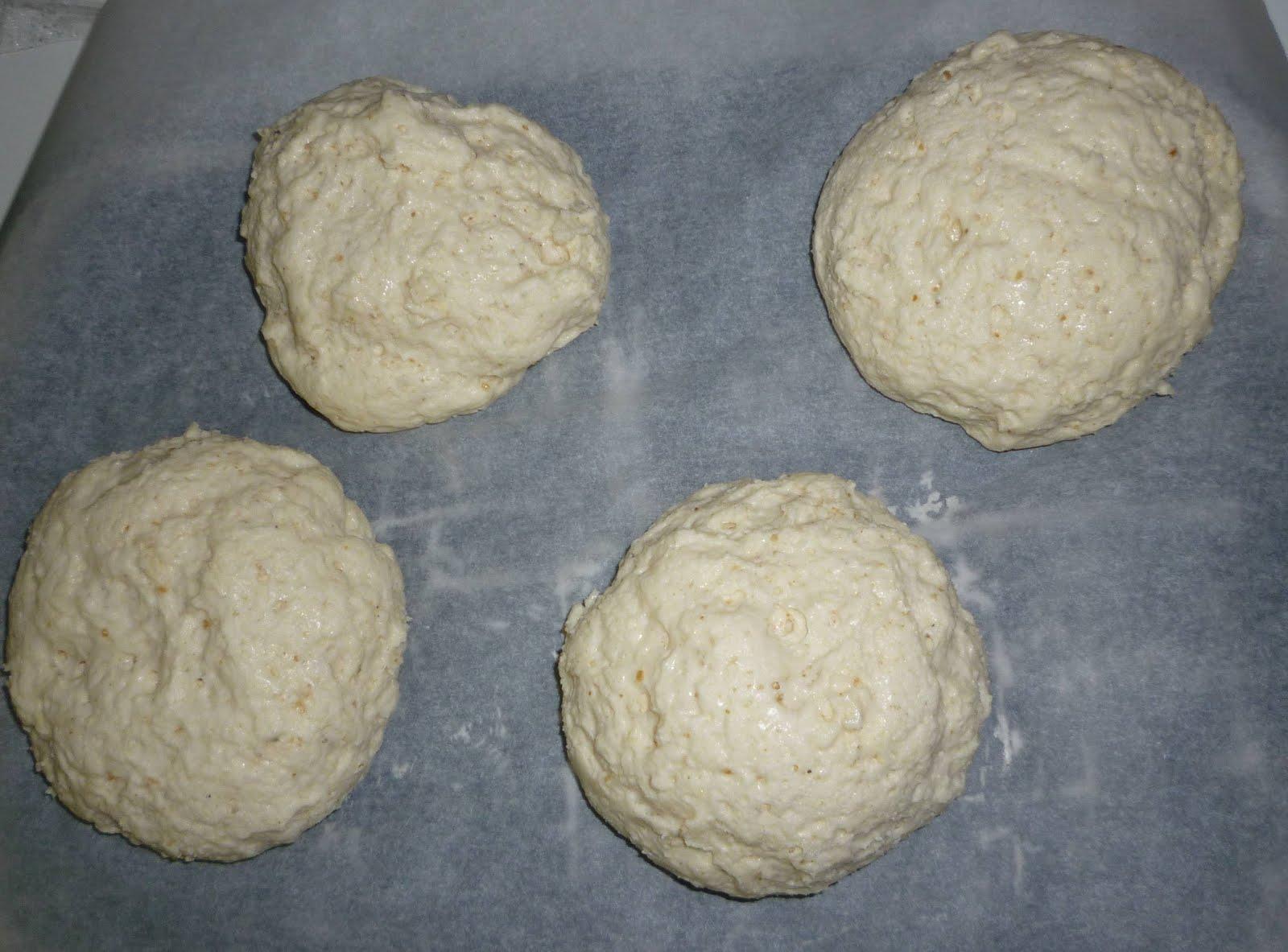 Panini senza glutine la cassata celiaca - Cucina in simpatia ...