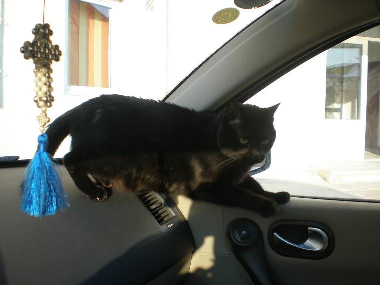 Baghi în maşină