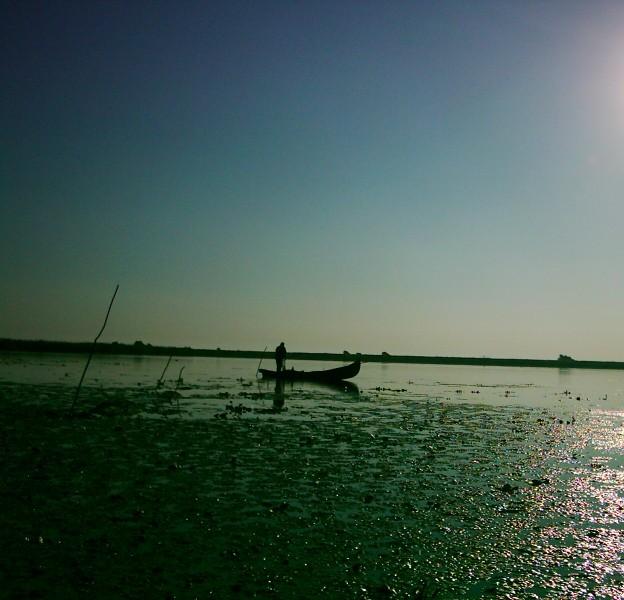 Delta Dunării, dimineaţa