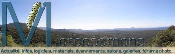 Microcosmons